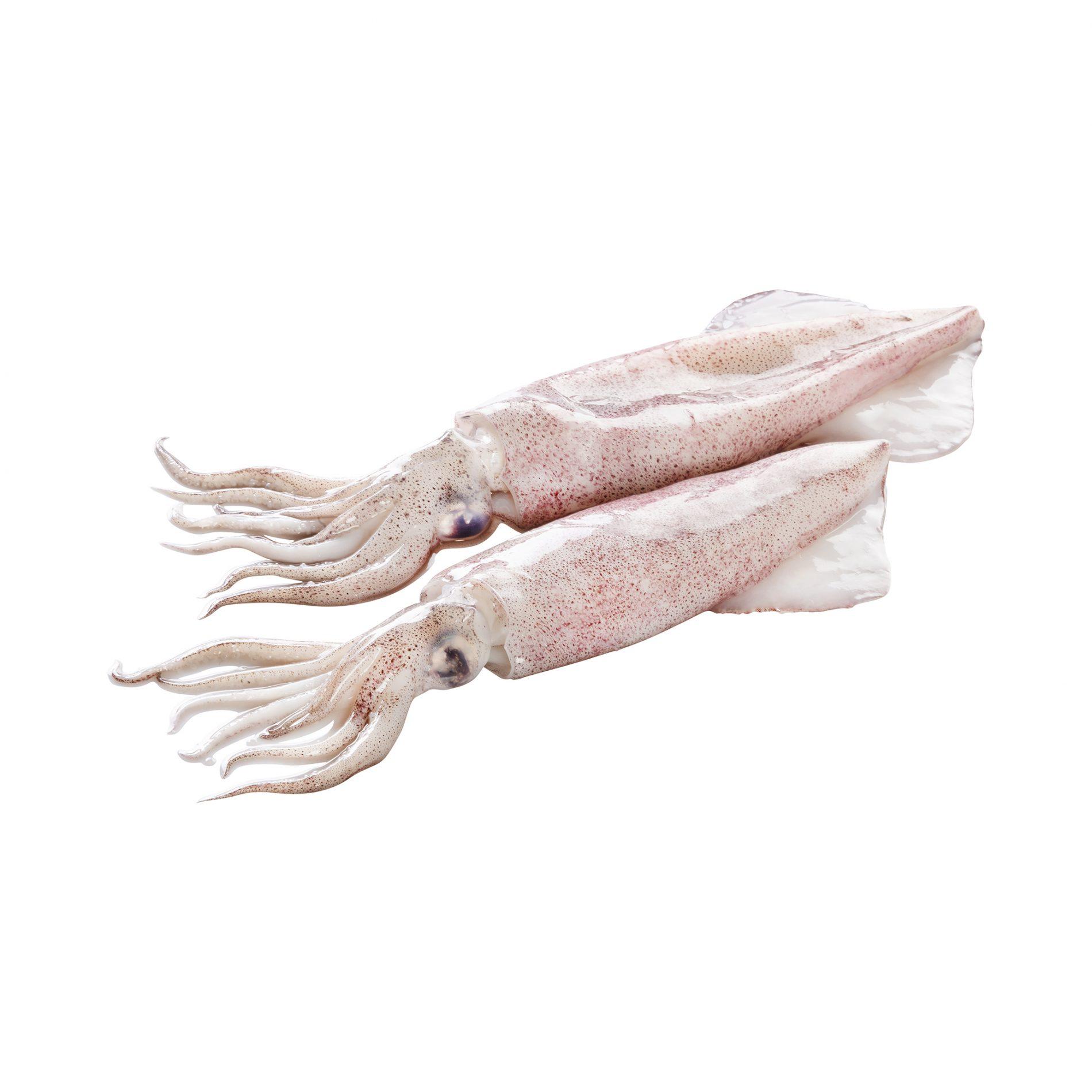 Fotografía de Alimentación. Pescados frescos Mercadona